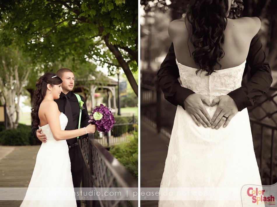 Kalamazoo Wedding Photographer (19)