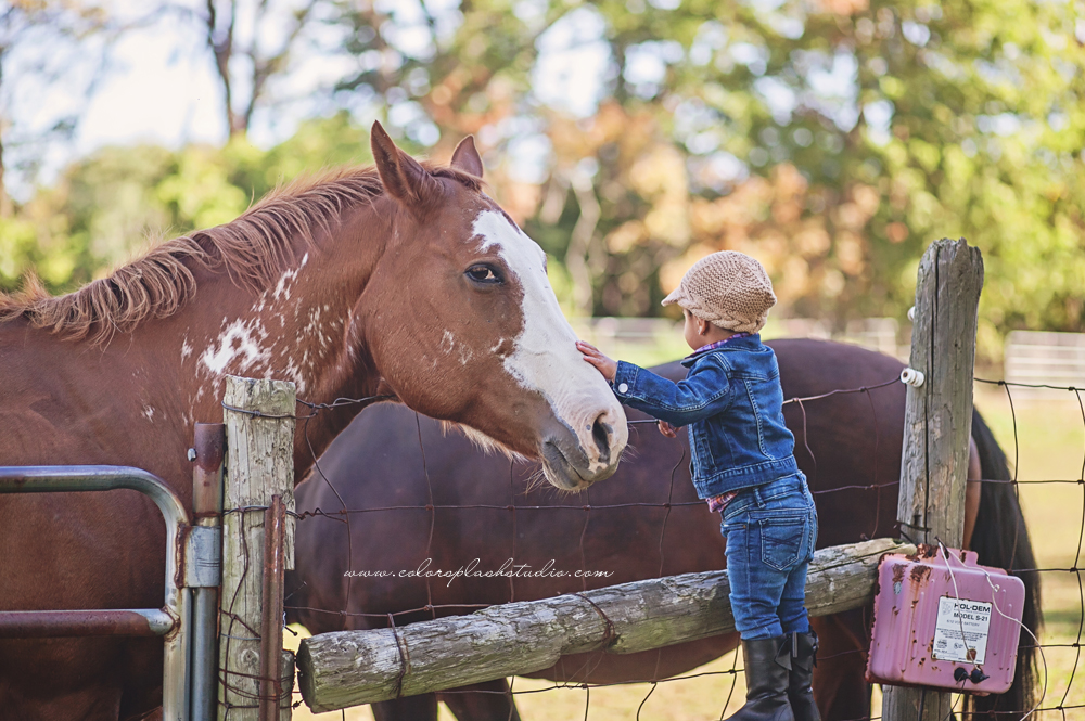 kid-horses-photography-session-2