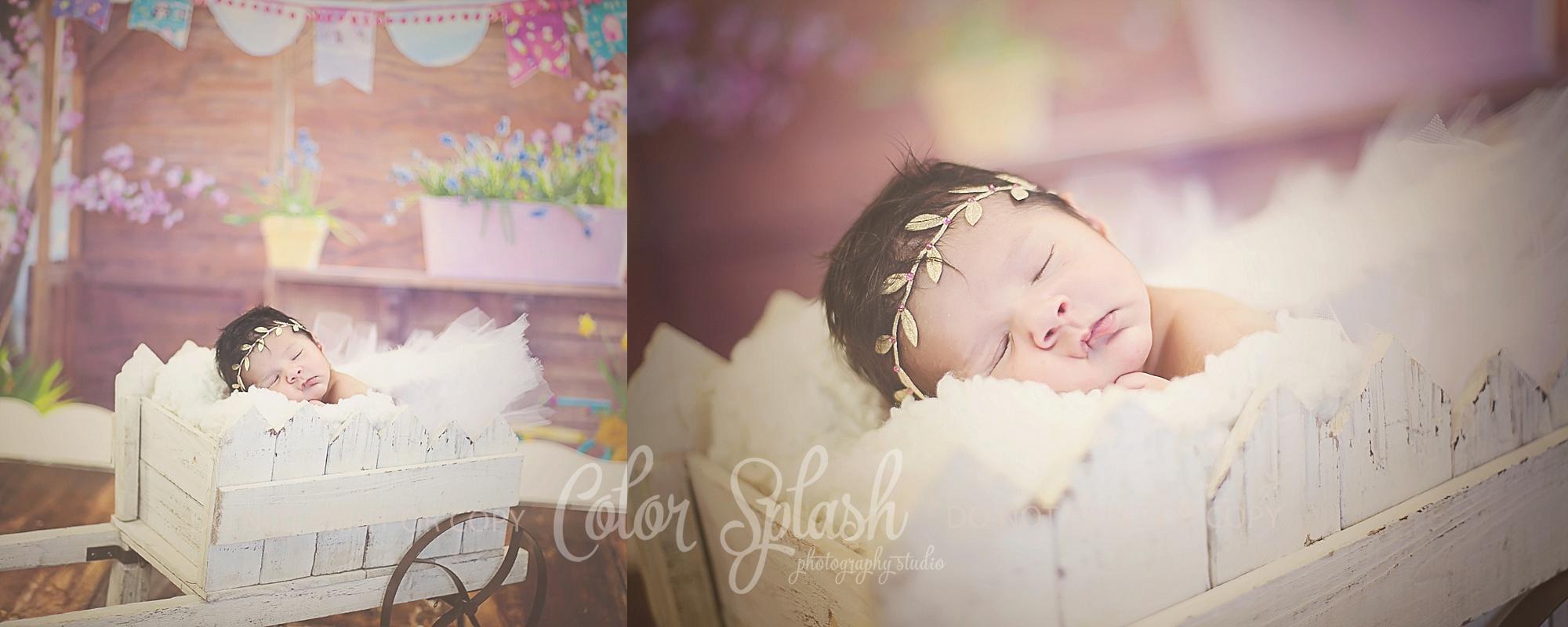 allegan-mi-newborn-photographer_0568
